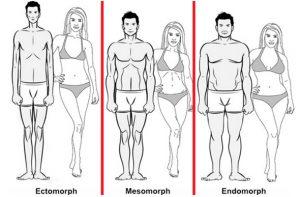 Seis personas, con tres morfotipos distintos. Ectomorfo, mesomorfo y endomorfo